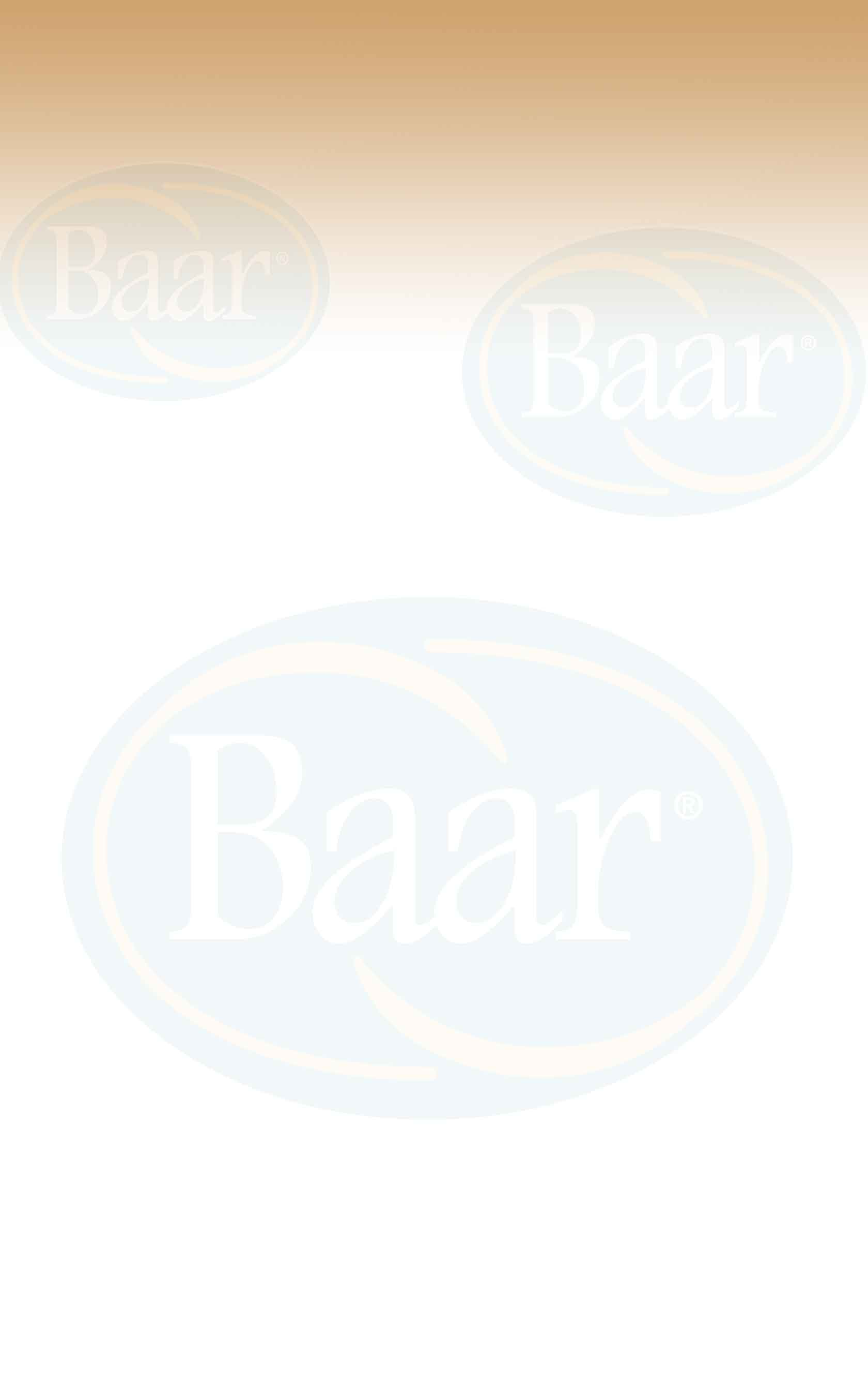 Background image of Baar logo for saltnsoda.com